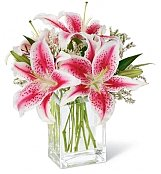 Flower Bouquets: Awareness Pink Lily Bouquet